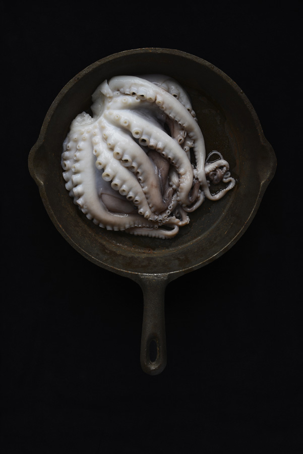 Fish, Cast Iron, Tasos, Gaitanos, Camilla, Wordie, octopus, sardines, heads, blood, back, background, photography, fine art, food, studio, lighting,